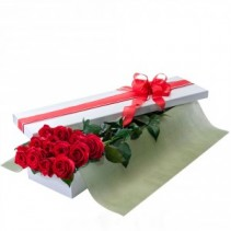 12 LONG STEM ROSES - BOX