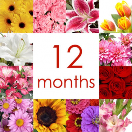 12 Months Of Flowers Delivery In Granger Yellow Rose