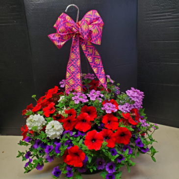 "12"" Premium Hanging Basket Mixed and Solid"