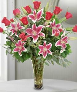 12 Premium Roses with Stargazers