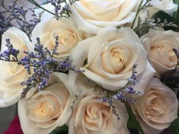 Premium vendella roses wrapped in cellophane  Vase not included