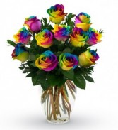 12 Rainbow Roses with baby's breath in a vase