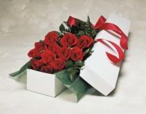 12 Roses in Box
