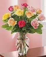 12 Roses, Mixed colors,  Gainesville, FL  ONLY!!!