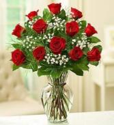 12 vase rose  Red roses