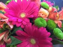 123 Vibrant cut  flower bouquet - not arranged in a vase