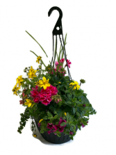 "13"" Mixed Hanging Planter Patio Pot"