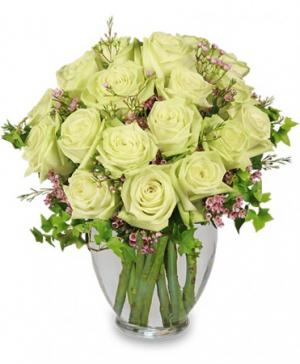 Remarkable Roses Arrangement in Winston Salem, NC | RAE'S NORTH POINT FLORIST INC.