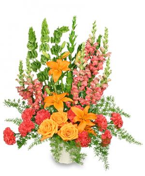 SPIRITUAL SPLENDOR Flower Arrangement in Garrett Park, MD | ROCKVILLE FLORIST & GIFT BASKETS
