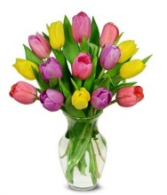 15 Mixed Tulips Vase