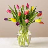 15 Stem Spring Breeze Multicolored Tulip Bouquet W
