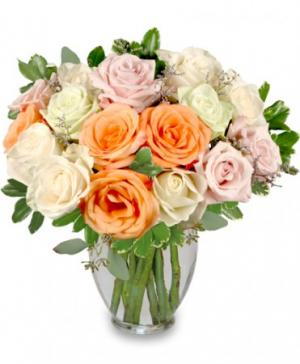Alabaster Roses Arrangement in Ozone Park, NY | Heavenly Florist