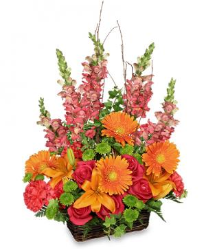 Brilliant Basket Arrangement in Acton, ON | BLOOMS AWAY FLOWERS AND GIFTS