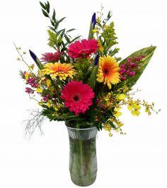 #16 Gerbera Brilliances  Vase