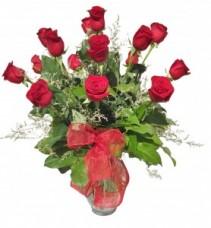 16 Red Roses  Arrangement