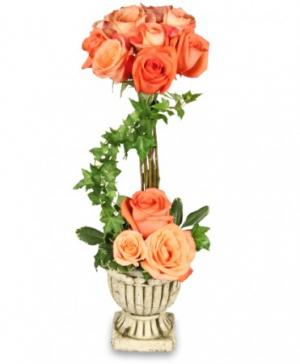 Peach Rose Topiary Arrangement in Bryson City, NC | VILLAGE FLORIST & GIFTS