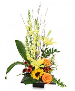 Expressive Blooms Arrangement in Calgary, AB | FIRST CLASS FLOWERS LTD.