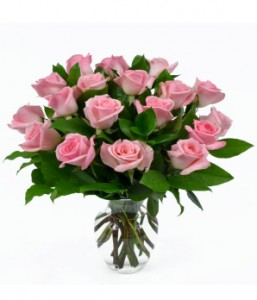 18 Light Pink Roses