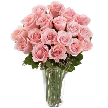 18 Long Stem Pink Roses