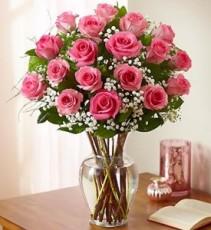 18 Pink Roses  PREMIUM LONG STEM ROSES