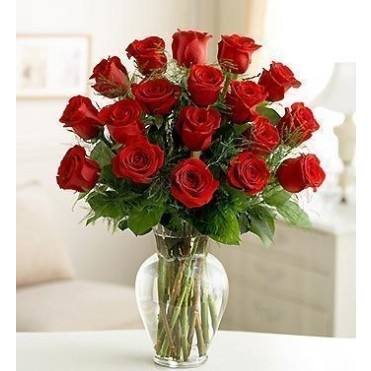 18 Premium Long Stem Red Roses Fl Arrangement