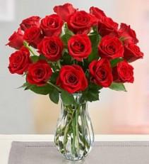 18 Premium Long Stem Valentine's Special!