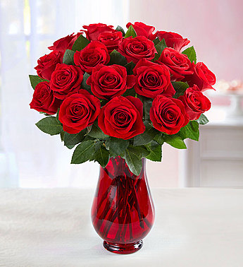 RED ROSES 18 STEMS