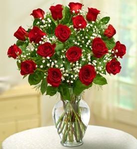 18 Red Roses   Premium Long Stem