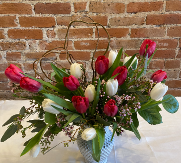 18 Tulips to show your love