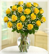 18 Yellow Burst Rose  Arrangement