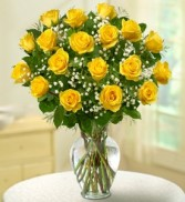 18 Yellow Roses  PREMIUM LONG STEM ROSES