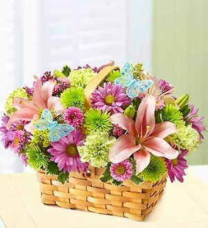 Spring Inspiration Everyday/Spring  in Elyria, OH | PUFFER'S FLORAL SHOPPE, INC.