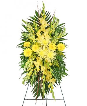 SOULFUL SUN Funeral Spray in Allen, TX | Lovejoy Flower and Gift Shop