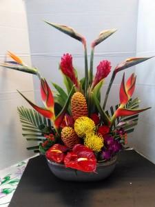 Tropical Retreat Tropical Arrangement