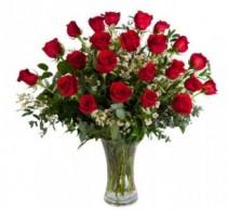 2 Doz Beautiful Roses roses