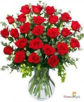 2 Dozen Red Roses  Special Of the Week