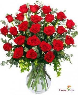 2 Dozen X the price of 1  Special Red Roses in Miami, FL | FLOWERTOPIA