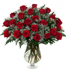 2 Dozen Long Stem Premium Roses Roses