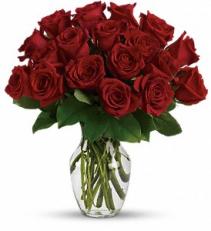 2 Dozen long stem red roses