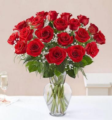 2 Dozen Long Stem Roses Your Choice of Color