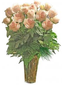 2 Dozen Pink Roses Rose