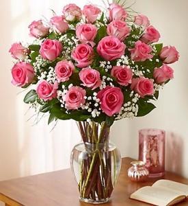 2 Dozen Pink Roses  PREMIUM LONG STEM ROSES