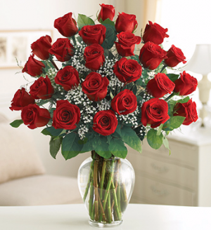 2 Dozen Red Rose Arrangement in Winston Salem, NC | RAE'S NORTH POINT FLORIST INC.