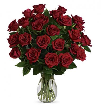 2 Dozen Red Roses Arrangement