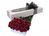 2 Dozen Red Roses Boxed