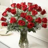 2 Dozen Red Roses with baby's breath in vase