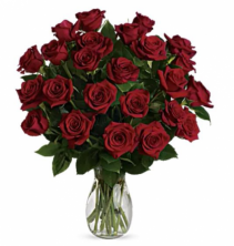 2 Dozen Roses Arrangement