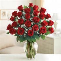 2 Dozen Roses in Vase