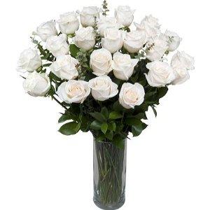 2 Dozen White Sympathy Roses