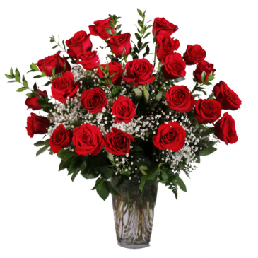2 DZ Red Roses Roses